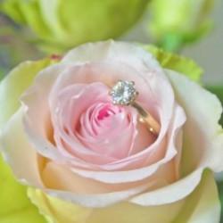 Verlovingsringen (8)